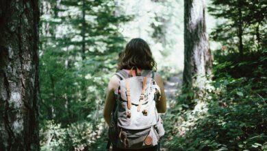 Tourisme randonnée